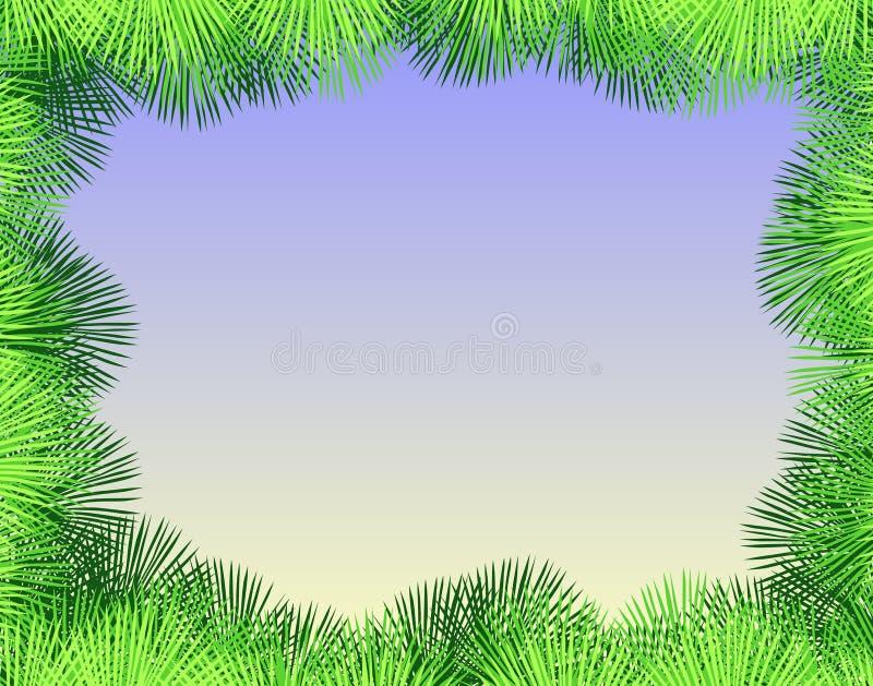 Palmenfranse vektor abbildung