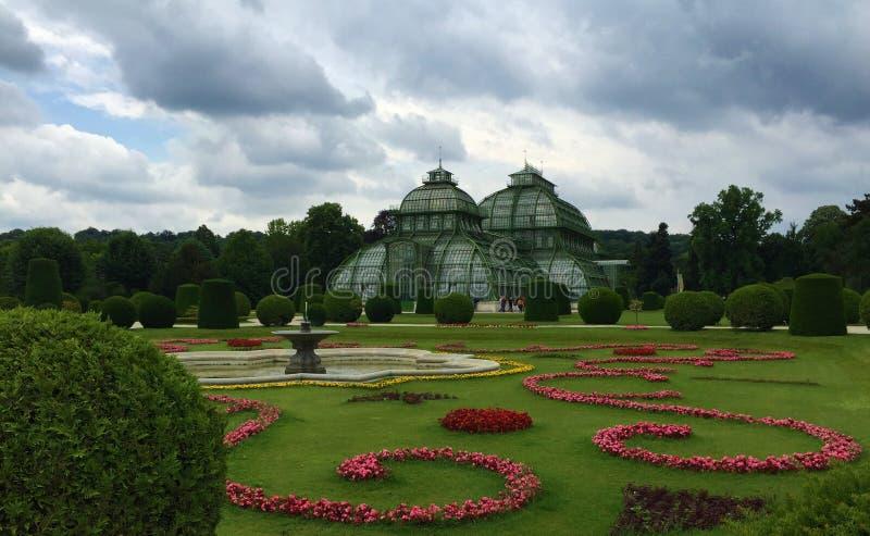 Palmenhaus Gömma i handflatan huset i Schönbrunn parkerar, Wien royaltyfria bilder