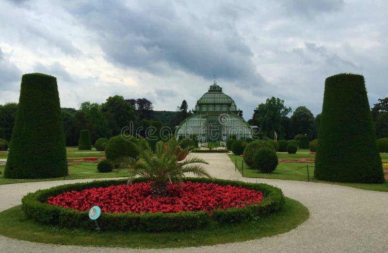 Palmenhaus Gömma i handflatan huset i Schönbrunn parkerar, Wien arkivbild
