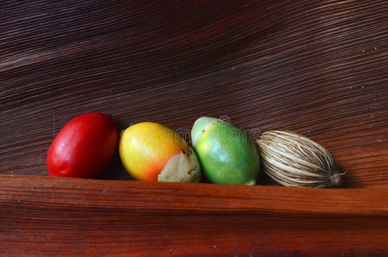 Palmensamen und -frucht auf einem Hintergrund des trockenen Palmblattes Dekorativer strukturierter Hintergrund mit Kopienraum lizenzfreie stockfotografie