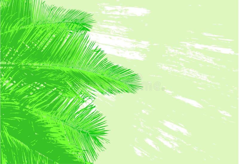 Palmenwedel stock abbildung