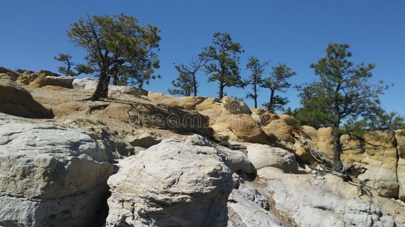 Palmer Park Bluffs image libre de droits