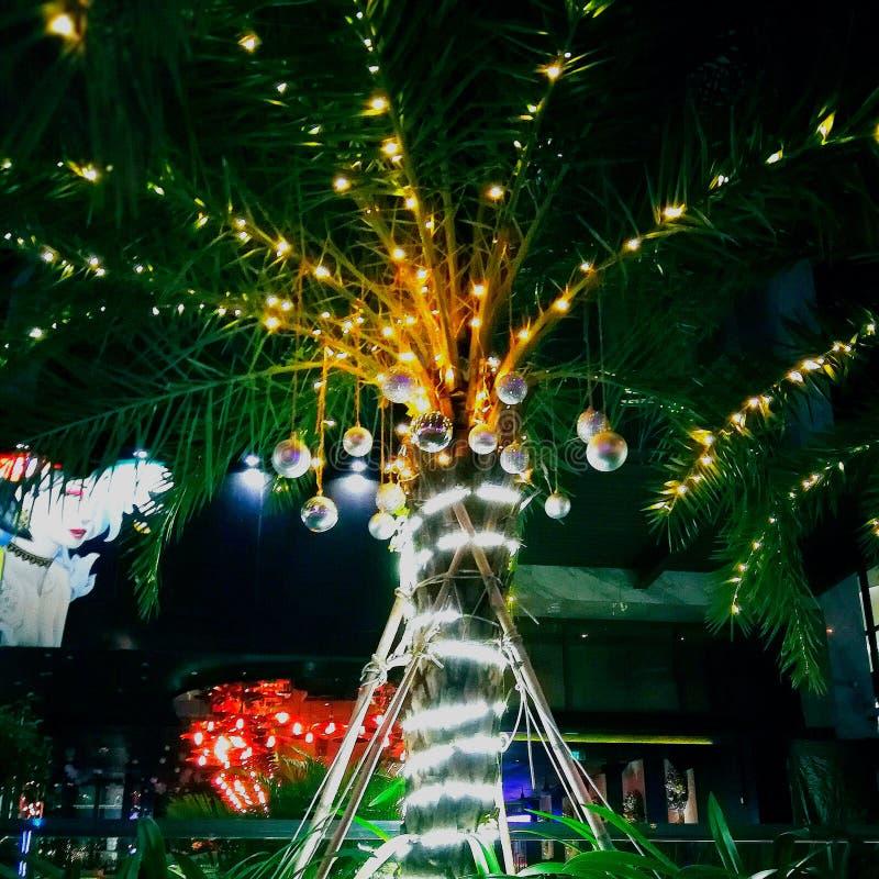 Palmera adornada con la bola de la Navidad Decoraci?n de la Navidad en la palmera fotos de archivo libres de regalías