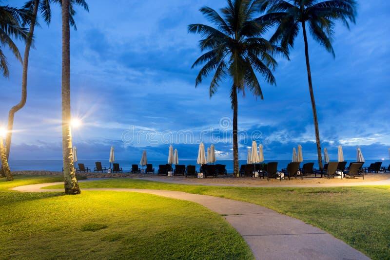 Palmera con la silla del paraguas y de playa en la isla tropical a fotos de archivo