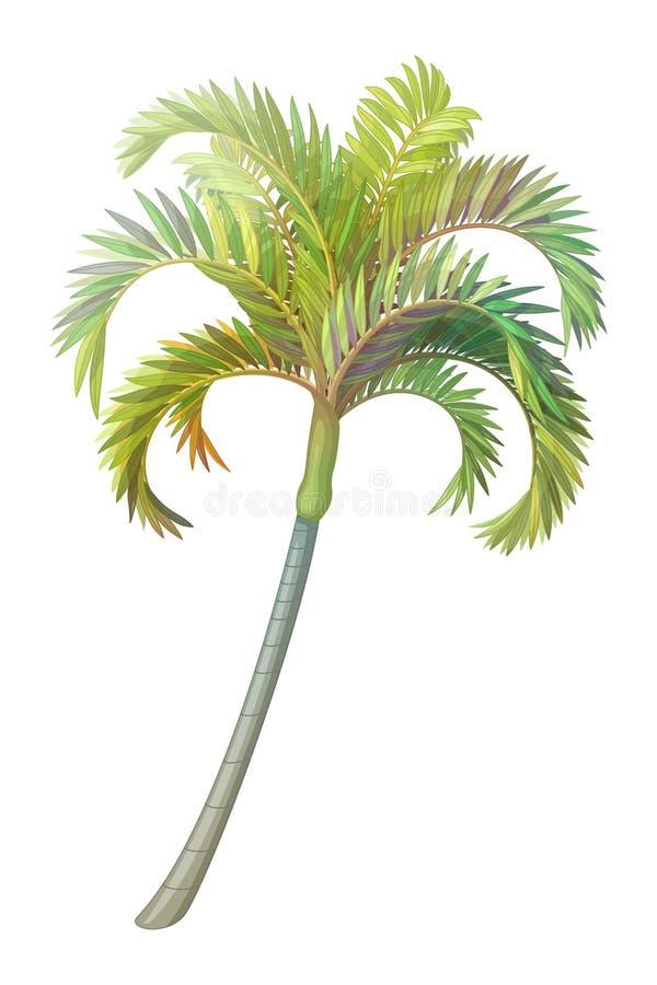 Palmera handdrawn del clipart de la planta del vector libre illustration