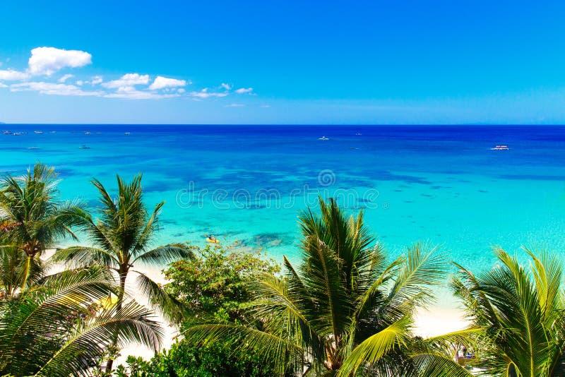 Palmera hermosa sobre la playa tropical arenosa blanca Isla del mar y de Boracay en el fondo Opini?n de la naturaleza del verano imagen de archivo libre de regalías