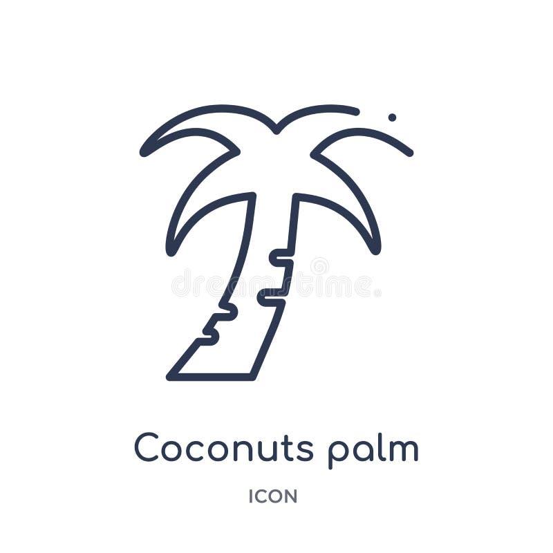 Palmera linear de los cocos del icono del Brasil de la colección del esquema de la cultura La línea fina palmera de los cocos del ilustración del vector