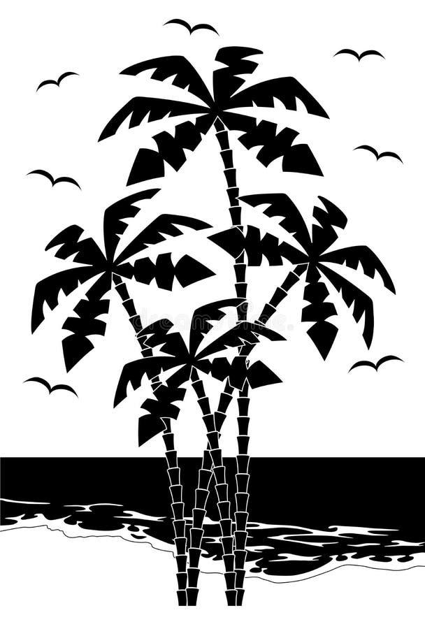 Palmera negra de la silueta    stock de ilustración