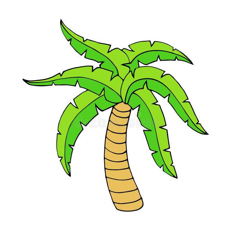 Palmera tropical ilustración del vector