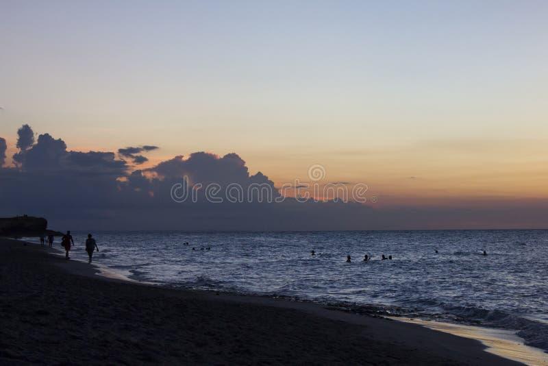 Palmera tropical con puesta del sol imágenes de archivo libres de regalías