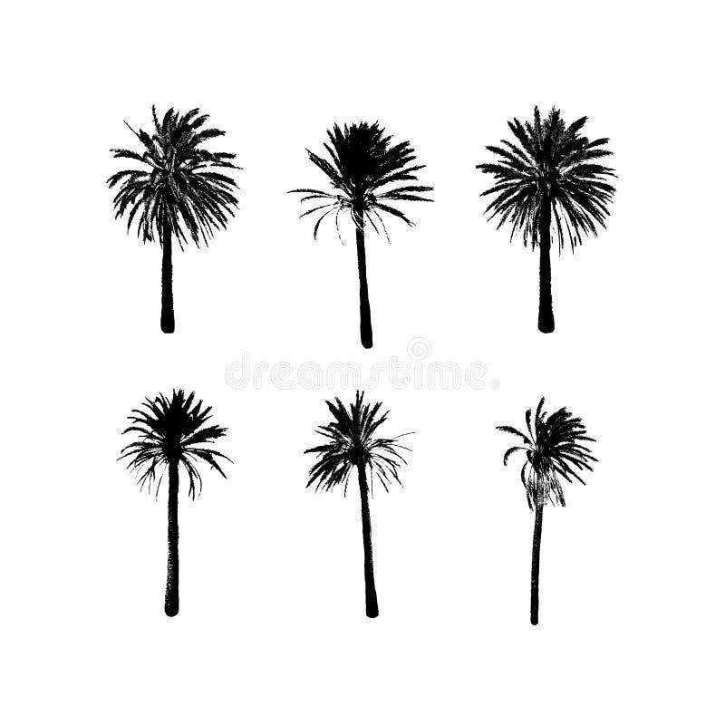Palmera tropical Diseño exótico de la moda del verano Símbolo del viaje y de las vacaciones stock de ilustración
