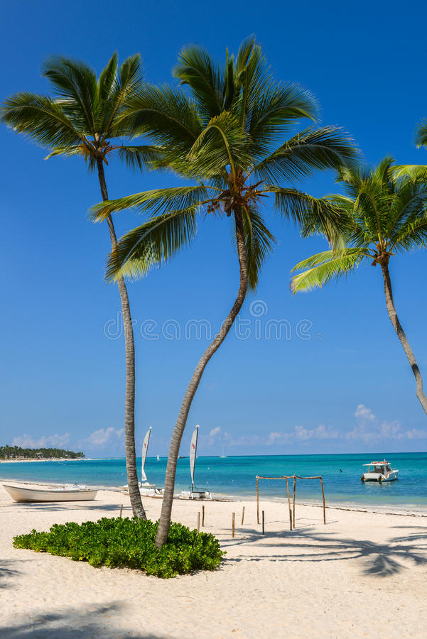 Palmera y barco en una playa tropical de la arena blanca imponente fotos de archivo libres de regalías