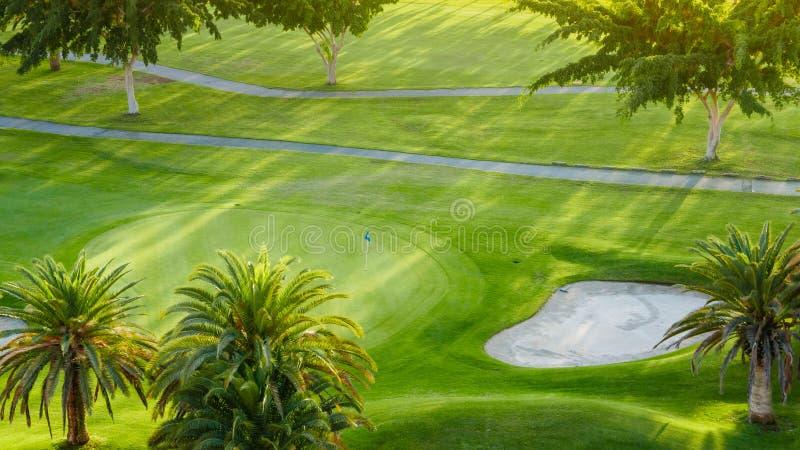 Palmeras en corte verde del golf fotos de archivo libres de regalías
