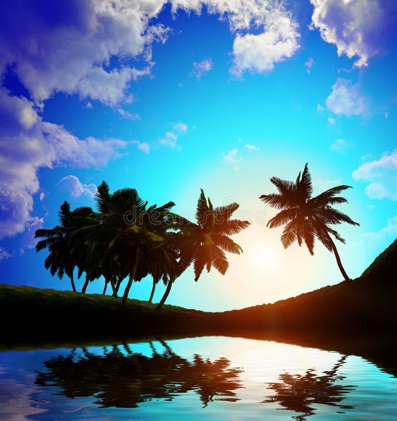 Download Palmeras A En Fondo De La Puesta Del Sol Stock de ilustración - Ilustración de ambiente, caribbean: 42440815