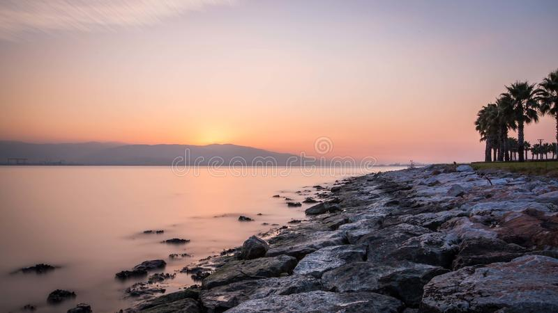 Palmeras en la playa por puesta del sol foto de archivo libre de regalías