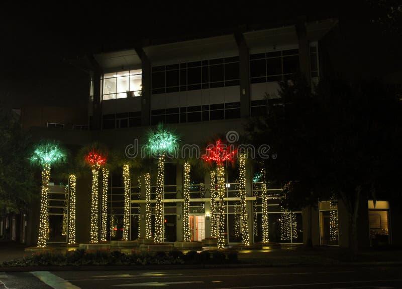 Palmeras encendidas para arriba para la Navidad en Daniel Island fotografía de archivo libre de regalías