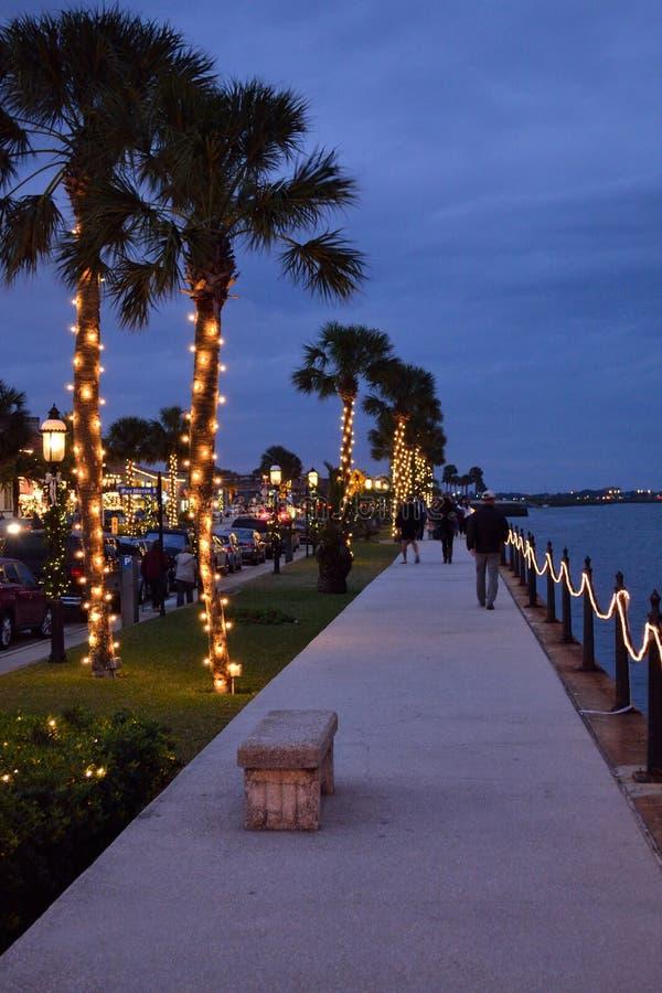 Palmeras a lo largo del Lit de la bahía para arriba para la Navidad foto de archivo