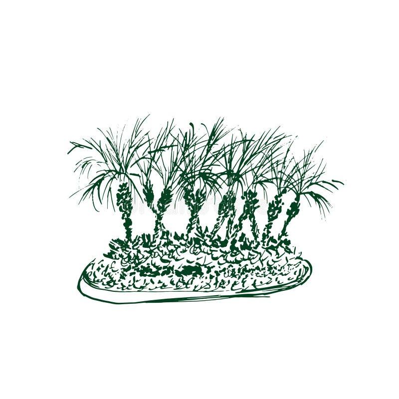 Palmeras tropicales aisladas en el fondo blanco Ejemplo del grupo de las palmas de coco Bosquejo dibujado mano del vector stock de ilustración