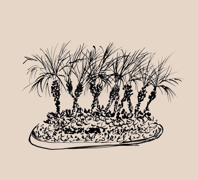 Palmeras tropicales aisladas en fondo beige ligero Ejemplo del grupo de las palmas de coco Siluetas negras Bosquejo drenado mano ilustración del vector