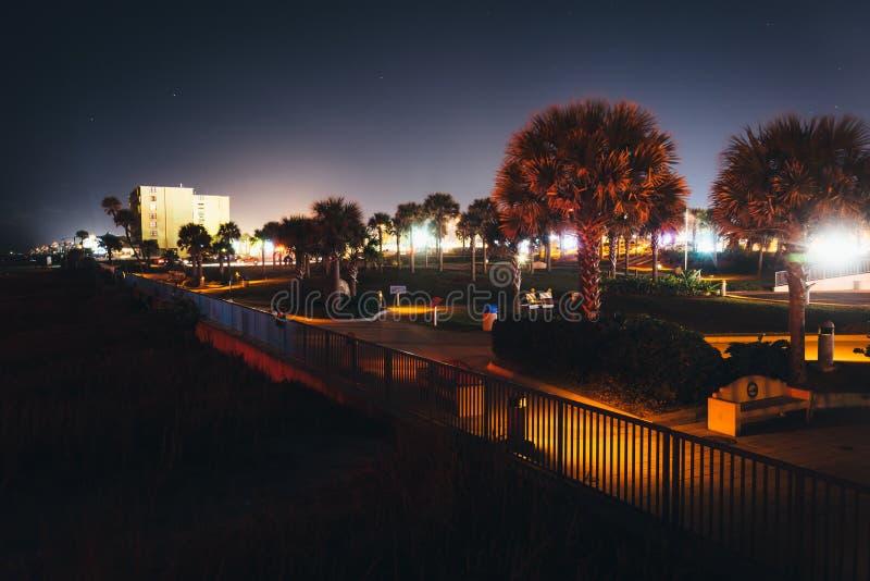 Palmeras y calzada a lo largo de la playa, en Daytona Beach, florida imagenes de archivo