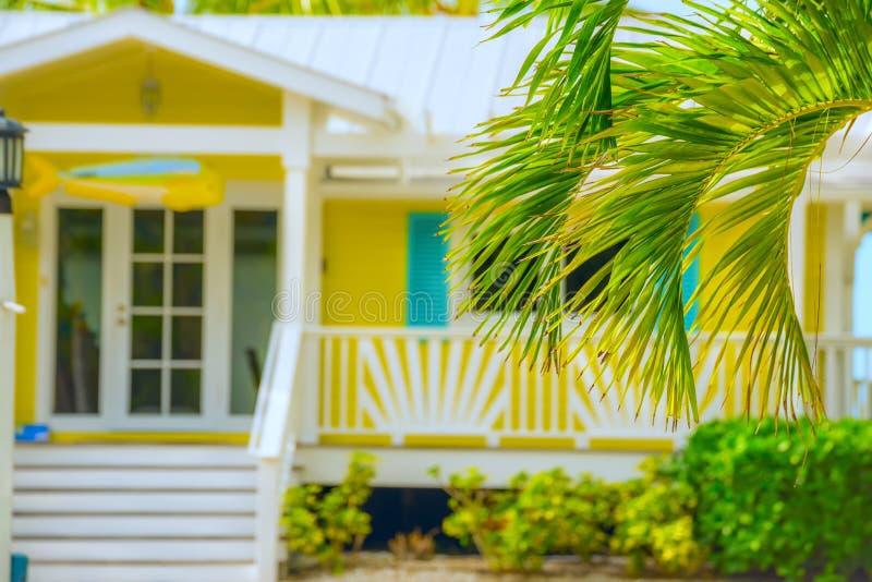 Palmeras y casa de verano fotografía de archivo