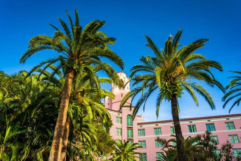 Palmeras y el hotel de Vinoy en St Petersburg, la Florida foto de archivo libre de regalías