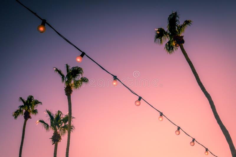 Palmeras y luces del partido de la secuencia en el Palm Springs el valle Coachella de la puesta del sol imágenes de archivo libres de regalías