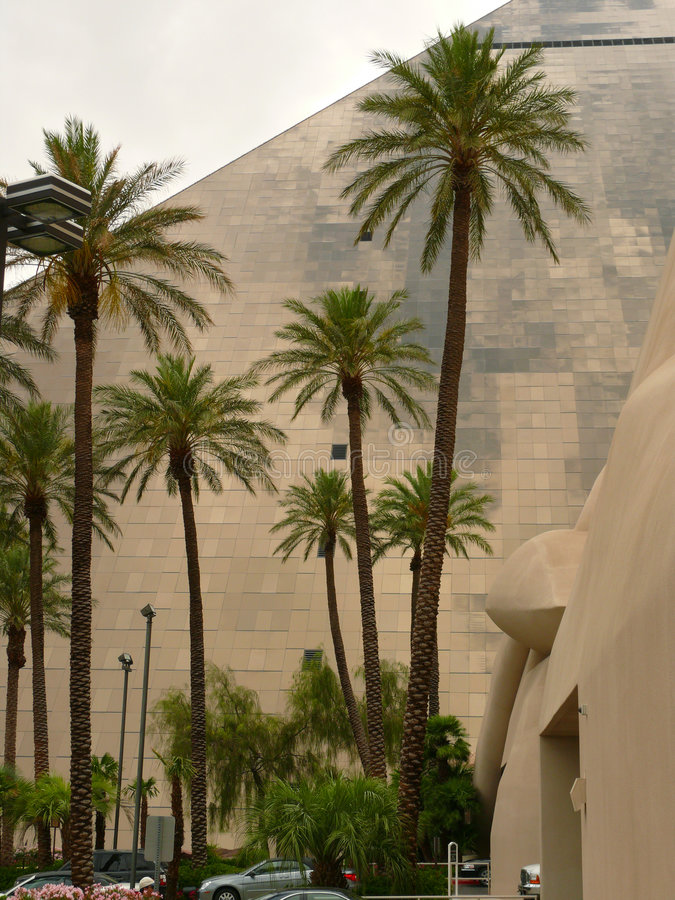 Palmeras y Luxor en Vegas foto de archivo libre de regalías