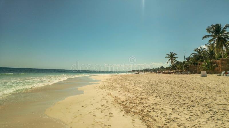 Palmeras y playa arenosa blanca en la puesta del sol en Caribbeans imagen de archivo