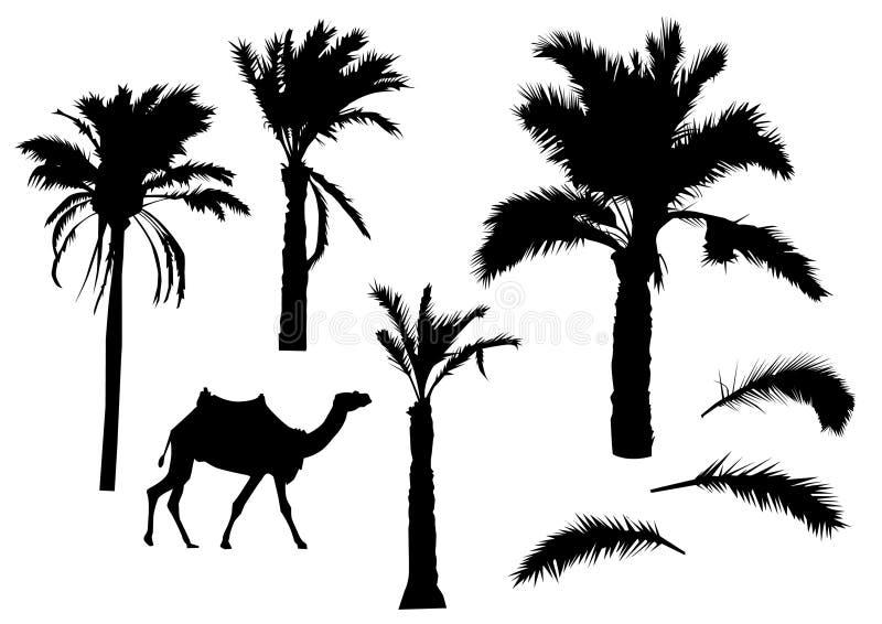 Palmeschattenbilder stock abbildung