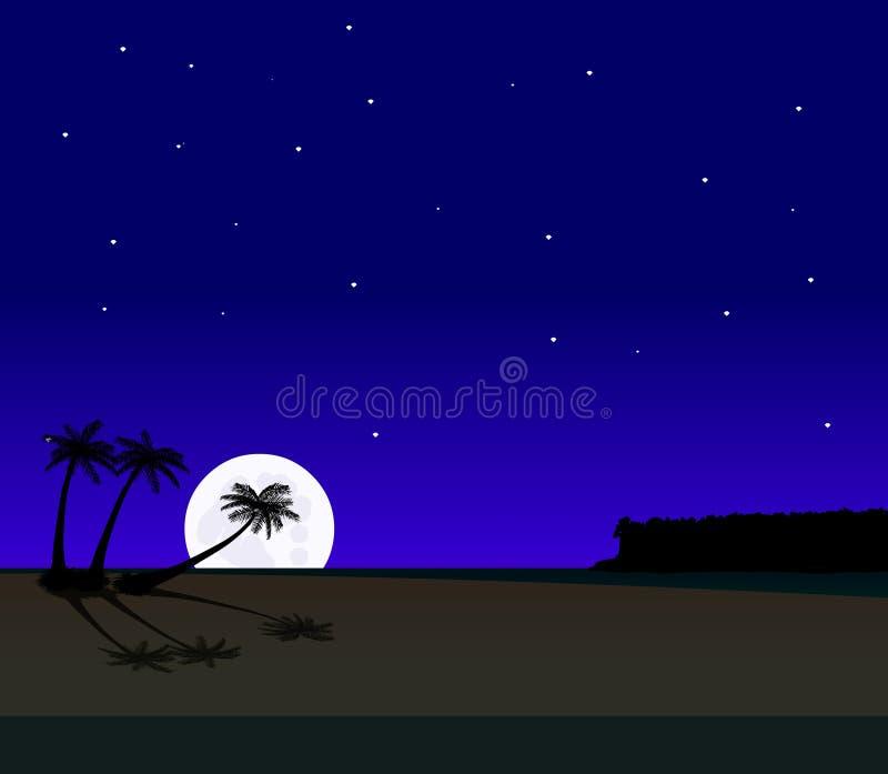 Palmestrand nachts lizenzfreie abbildung