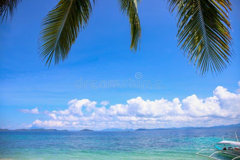 Palmette de Cocos et paysage bleu de mer avec le bateau de pêche Vue en feuille de palmier verte d'île Vacances exotiques de pays photographie stock libre de droits