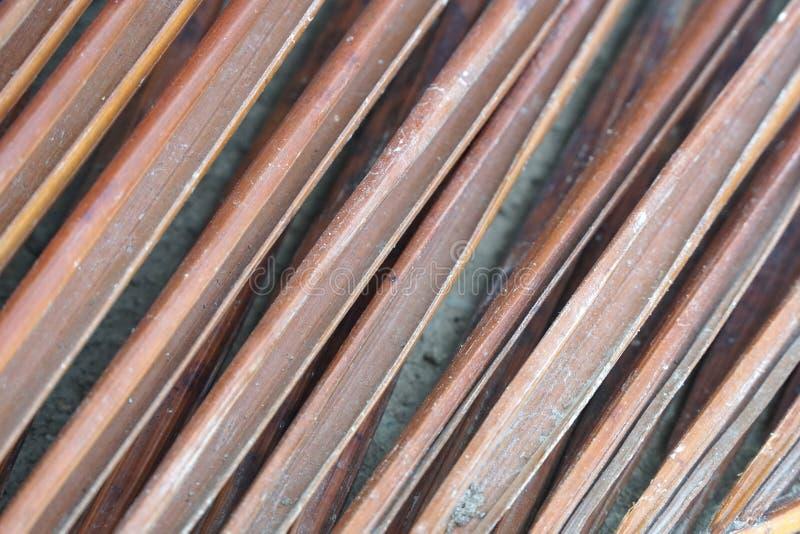 Palmette sèche au sol images stock