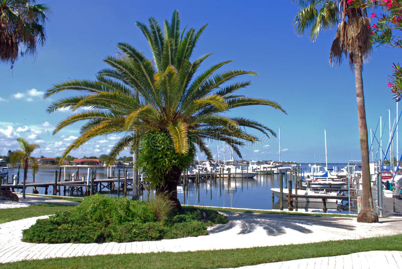 Palmetto Florida Marina. The marina at Palmetto Florida royalty free stock images