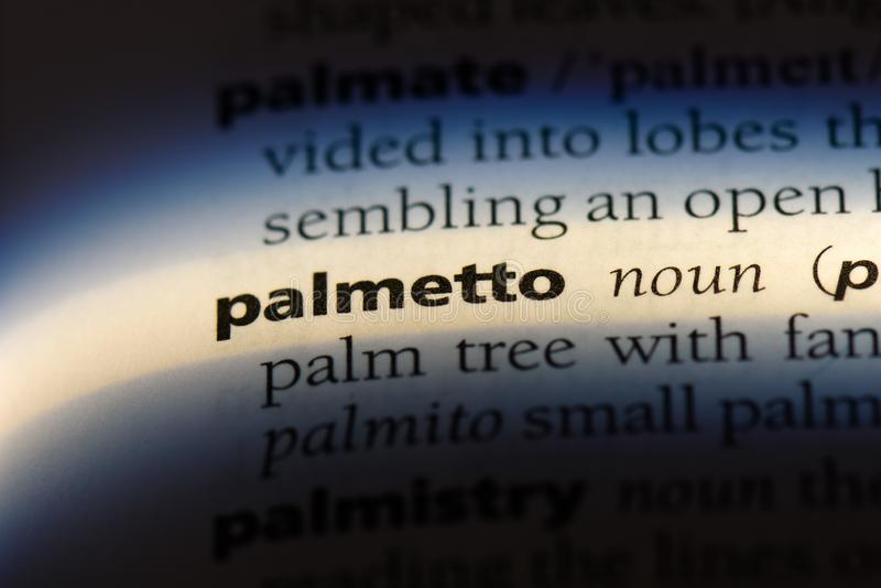 Palmetto. Word in a dictionary.  concept stock images