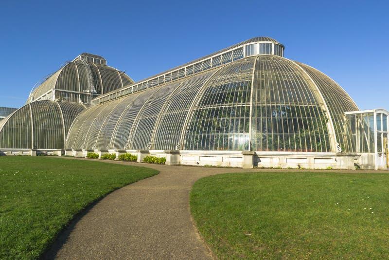 Palmhuis in Kew-Tuinen stock afbeeldingen
