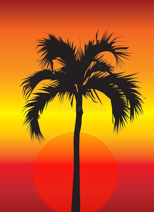 Palmier au coucher du soleil illustration libre de droits