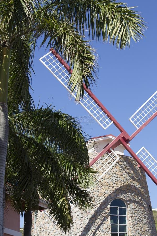 Palmier behing de moulin à vent image libre de droits