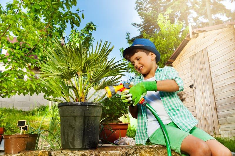 Palmier de arrosage de petit jardinier avec l'arroseuse images libres de droits