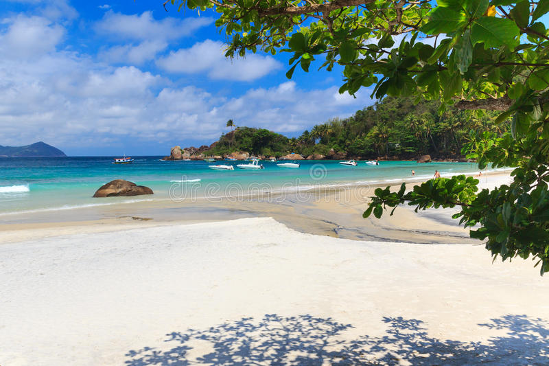 Palmier de ciel de l'eau bleue d'Aventueiro de plage photos libres de droits