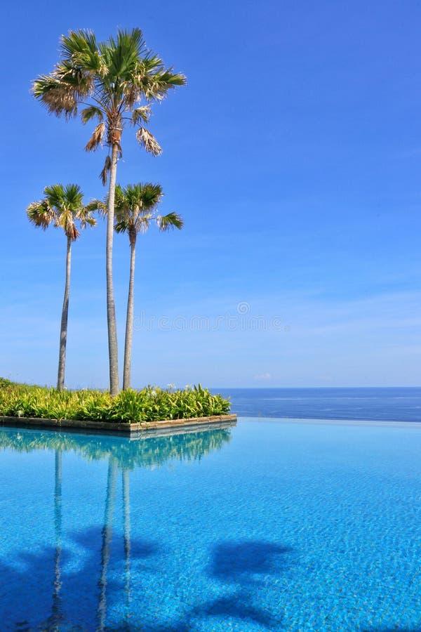 Palmier et belle piscine d'hôtel de luxe, avec la vue stupéfiante photos stock