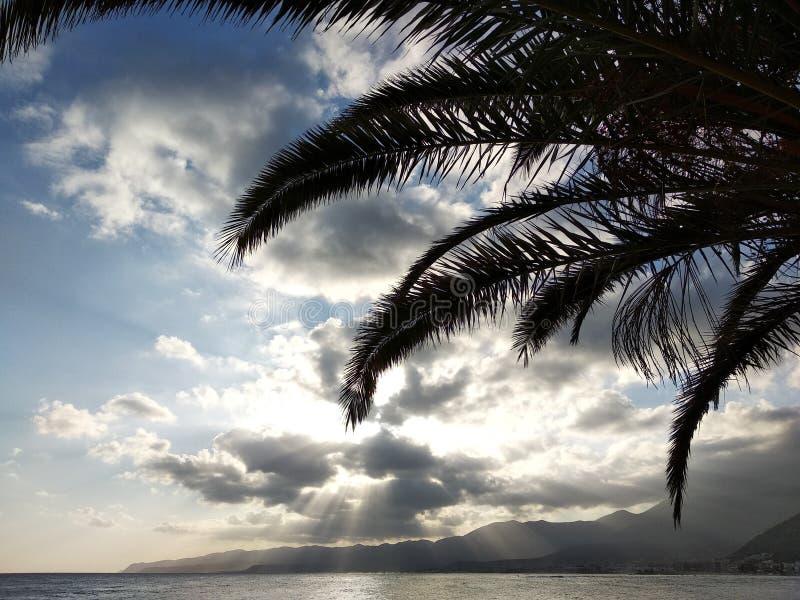Palmier, mer et montagnes photo libre de droits