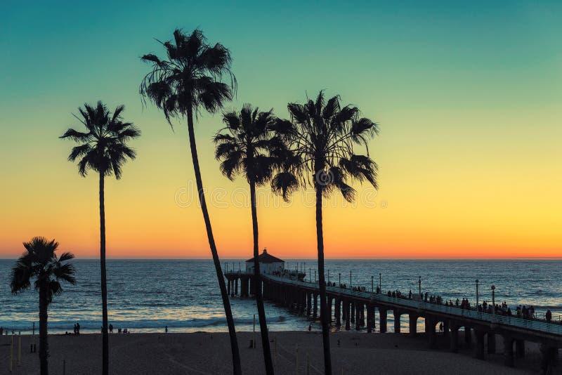 Palmiers à la plage de la Californie Vintage traité photos libres de droits