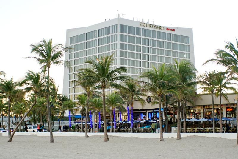 Palmiers au bord de plage de Fort Lauderdale photos stock