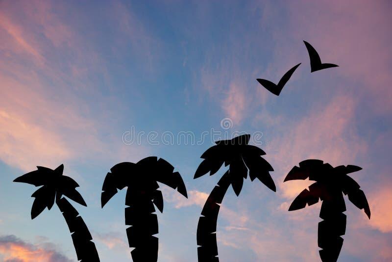 palmiers contre le ciel tropical de coucher du soleil images stock
