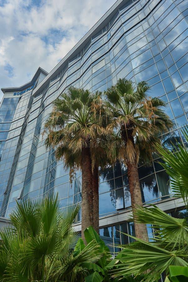 Palmiers dans le haut bâtiment en verre de fond et ciel bleu dans les nuages images libres de droits