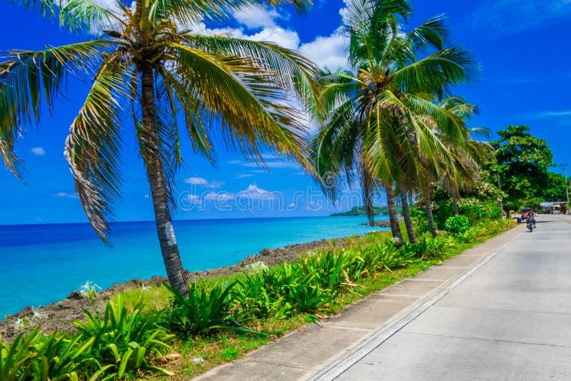 Palmiers dans un côté d'une route dans San Andres, Colombie à un bel arrière-plan de plage photographie stock