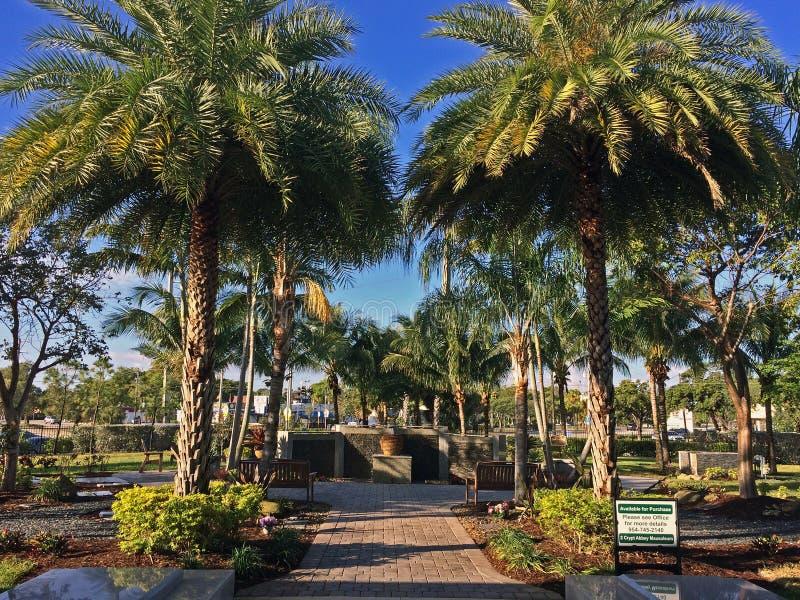 Palmiers de cimetière de parc de croissant en Floride photos libres de droits