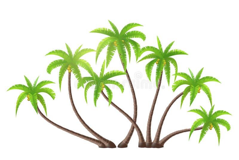 Palmiers de noix de coco illustration stock