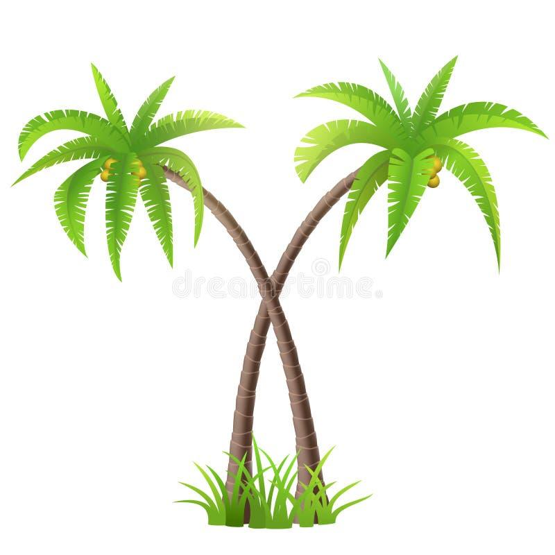 Palmiers de noix de coco illustration de vecteur